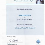 Diploma Milestone